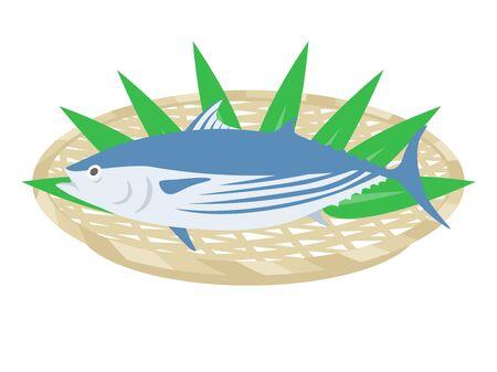 Illustration of bonito