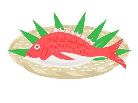Illustration of the fish