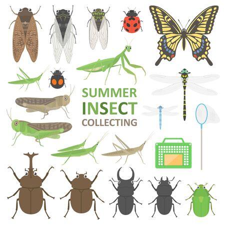 Summer Insect Illustration Set Illusztráció
