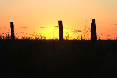 Broken barbwire fence landscape.