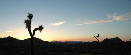 The sun sets over the mountains in Joshua Tree National Park. photo