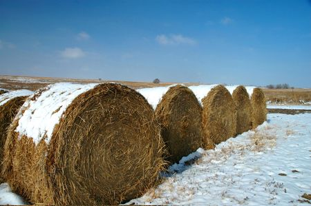 Kansas hay rolls with a light dusting of snow. Stock Photo