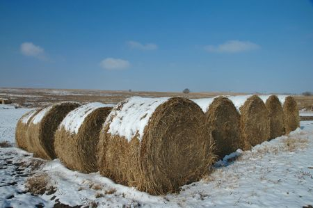 featureless: Several hay rolls dot the otherwise featureless plains of central Kansas.