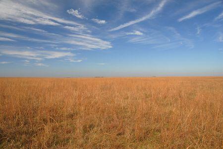 An open view from the Kansas landscape.