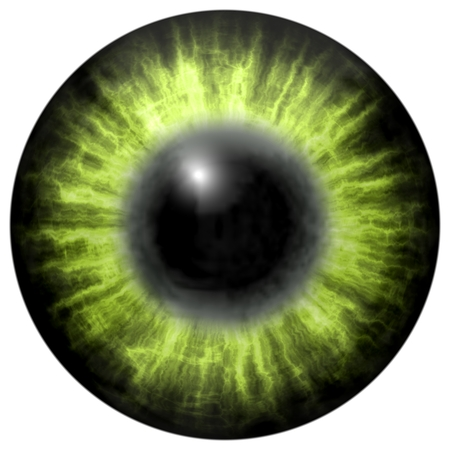 green eye: light green eye with middle pupil and dark retina. Dark colorful iris around pupil, detail view into eye bulb.