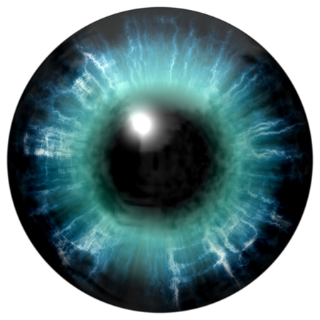 blue eyes: Illustration of blue eye iris, light reflection. Middle size of open eyes.