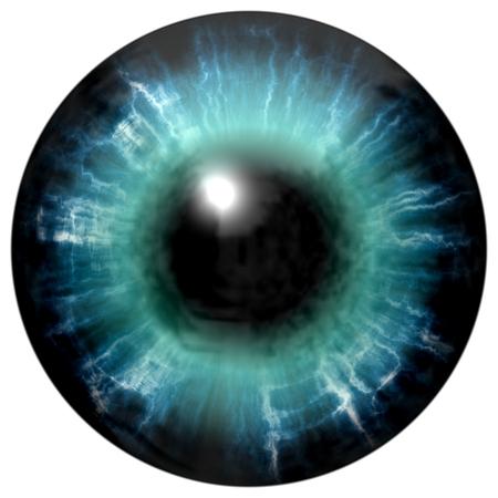 light reflection: Illustration of blue eye iris, light reflection. Middle size of open eyes.