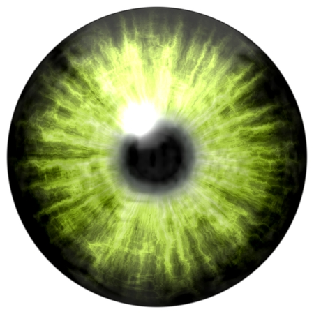 dilated pupils: light green eye with middle pupil and dark retina. Dark colorful iris around pupil, detail view into eye bulb.