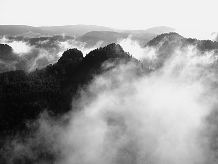 increased: View into deep misty valley in Saxony Switzerland. Sandstone peaks increased from foggy background. Black and White picture.