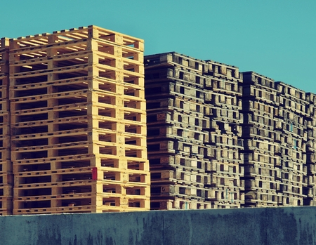 transportation company: Stock of new wooden euro pallets at transportation company