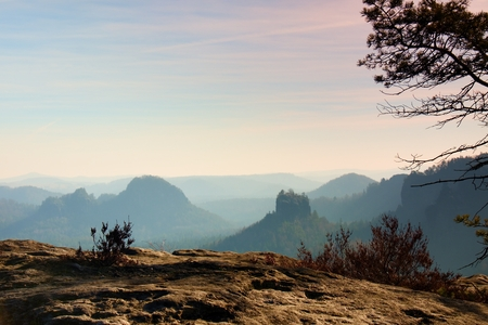 increased: The peak of cliff with bush of heather. Beautiful valley of rocky mountains park. Hills increased from fresh humidity. Stock Photo