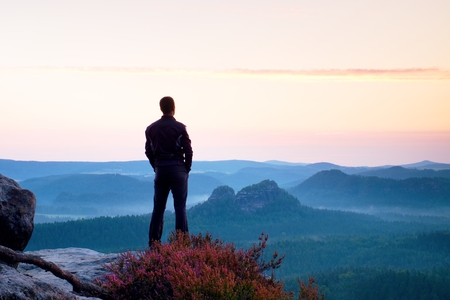 ヘザーのブッシュと崖の上の黒の長身の男。シャープのロッキー山脈公園・展望は、谷の上ポイントします。