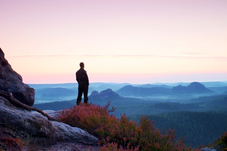 Tall man in black on the cliff with heather bush. Sharp rocky mountains park and view point above valley.