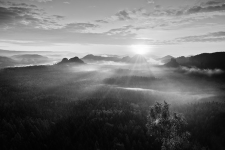 inversion: Autumn sunrise panorama  in a beautiful mountain within inversion. Peaks of hills increased from foggy background. Stock Photo