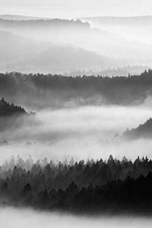 梢を鋭い。逆転内の美しい山で秋の日の出。丘のピークは、霧の背景から増加しました。