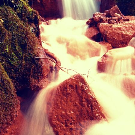 sediments: Cascades in rapid stream of mineral water. Red ferric sediments on big boulders between ferns