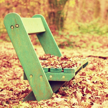 Sad abandoned green bench in the park under dry maple and beech leaves. Stock Photo