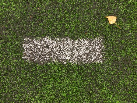 end of the line: End of football season. Dry birch leaf fallen on ground of green plastic turf football with painted white line.