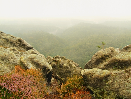 melancholic: Melancholic autumn morning in Rock Park. View into long deep valley full of colorful heavy mist. Autumn landscape within The daybreak after rainy night