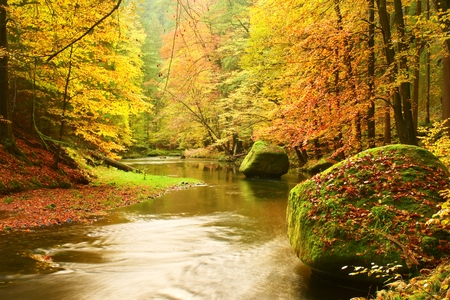 river banks: Big boulders with fallen leaves. Autumn mountain river banks. Gravel and fresh green mossy boulders on river banks covered with colorful leaves from beeches, maples and birches. Stock Photo