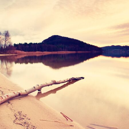 colorful sky: At lake after sunset. Wet sand beach with dry tree  fallen into water. Colorful sky up the horizon.