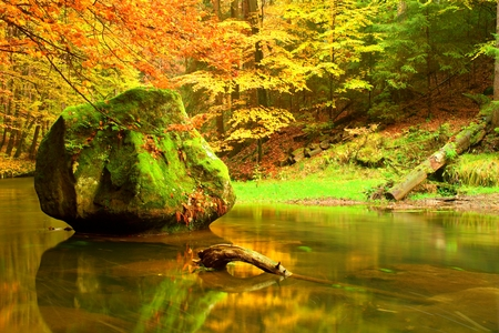 bended: Colors of autumn mountain river. Colorful banks with leaves, leaves trees bended above river. Stock Photo