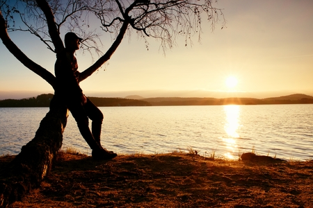 nature silhouette: Man on tree. Silhouette of  lone man sit on branch of birch tree  in front of the sunset at shoreline.