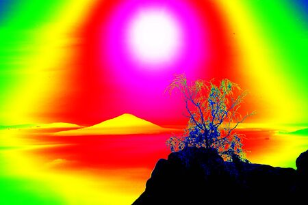 thermography: Fantastic infrared scan of rocky landscape, pine forest with colorful fog, hot sunny sky above. Grunge background in amazing thermography colors.
