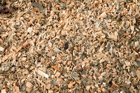 shelling: Wet corn maize silage milled as animal feed. Waste from the end of corn shelling process