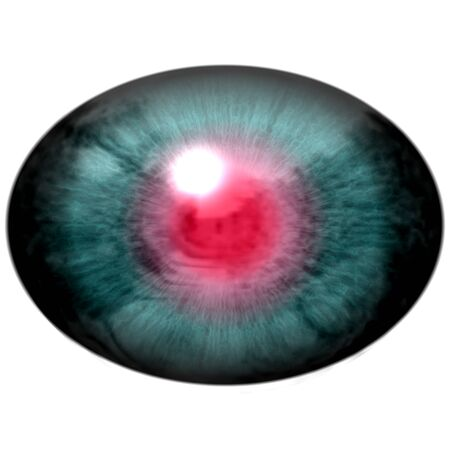animal eye: Blue animal eye with open pupil and bright red retina in background. Colorful iris around pupil, detail of eye bulb.