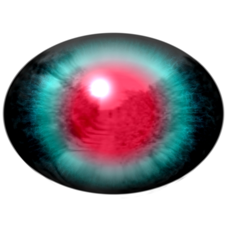 open eye: Blue animal eye with open pupil and bright red retina in background. Colorful iris around pupil, detail of eye bulb.