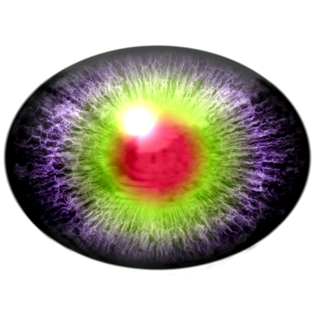 pupil: Isolated eye. Raptor purple eye with large pupil and bright red retina in background. Dark iris around pupil. Stock Photo