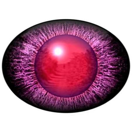 dilated pupils: Isolated eye. Raptor purple eye with large pupil and bright red retina in background. Dark iris around pupil. Stock Photo