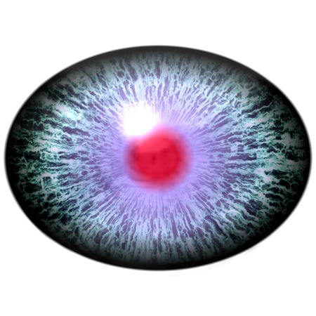 pupil: Blue animal eye with open pupil and bright red retina in background. Colorful iris around pupil, detail of eye bulb.