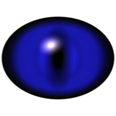retina: Isolated eye. Raptor blue violet eye with large pupil and dark retina in background. Dark iris around pupil.
