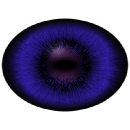 dilated pupils: Isolated eye. Raptor blue violet eye with large pupil and dark retina in background. Dark iris around pupil.