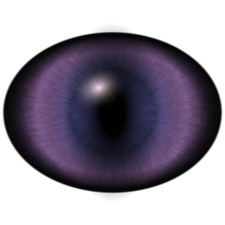 raptor: Isolated eye. Raptor purple eye with large pupil and bright red retina in background. Dark iris around pupil. Stock Photo