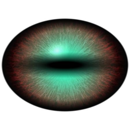 raptor: Isolated eye. Raptor purple eye with large pupil and thin green retina in background. Dark iris around pupil.