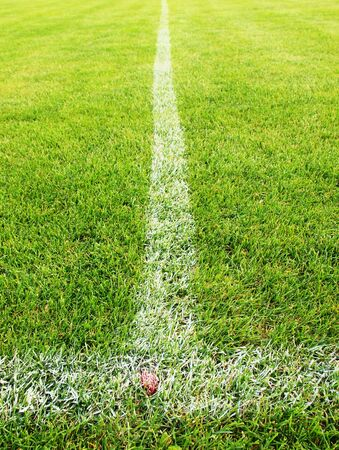 heated: White line on Heated winter football field with grass Stock Photo