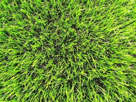 pasto sintetico: Ver en el césped de plástico, verde césped artificial textura de fondo Foto de archivo