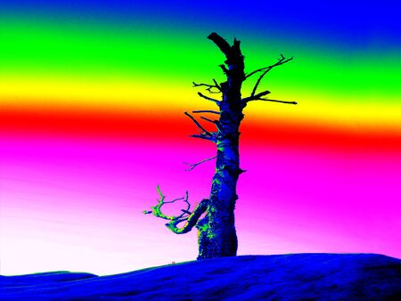 thermogram: Rock with burned tree. Fantastic infrared scan of a rocky peak. Ultra thermo vision.