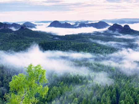 inversion: Marvelous daybreak. Misty awakening in a beautiful hills. Peaks of hills are sticking out from foggy background, the fog is red and orange due to Suns rays.