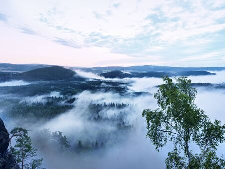 Marvelous daybreak. Misty awakening in a beautiful hills. Peaks of hills are sticking out from foggy background, the fog is red and orange due to Suns rays.