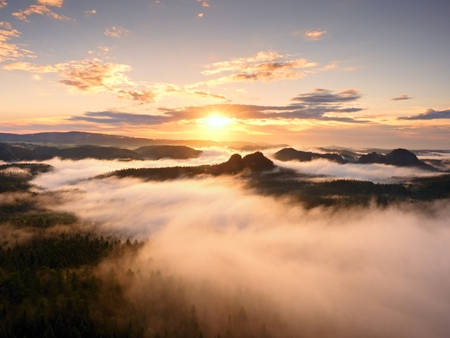 increased: Autumn sunrise forest in a beautiful mountain Within inversion. Treetops Increased from foggy background. Vivid effect.