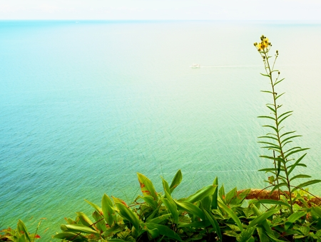 Grass straw on view point above sea level. Grass stalks in blossom, blue water level in contrast. Stock Photo