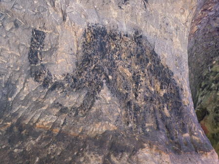 snoot: Abstract children art in sandstone cave. Black carbon mammoth paint of human hunting on sandstone wall, copy of prehistoric picture.