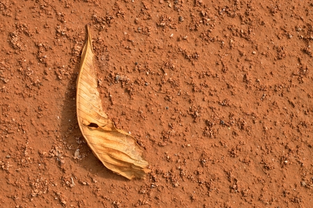 end of the trail: Dry chestnut leaf on tennis court. Dry light red crushed bricks surface on outdoor tennis ground. End of season.