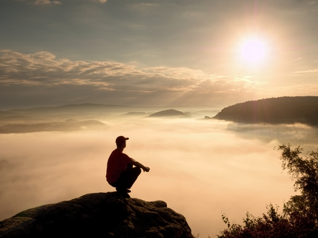 a wonderful world: Man tourist  sit on rock empire. View point with heather and branches  above misty valley. Sunny daybreak in rocky mountains.