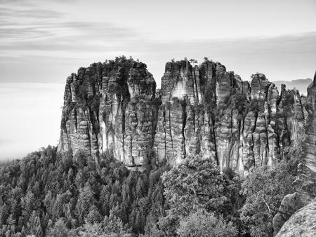 nature photo: Sharp sandstone cliffs of Schrammsteine ??rocks above a deep valley. Popular climbers resort. Deep cracks in rocks donne by strong rain erosion. Black and white photo Stock Photo