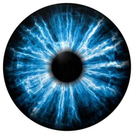 Illustration of blue eye iris, light reflection. Middle size of open eyes.